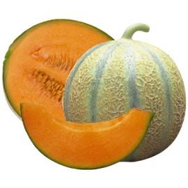 Melon Type charentais (la piece)