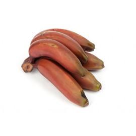 Bananes roses (la pièce)