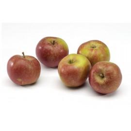 La Pomme Boskoop (le Kg)