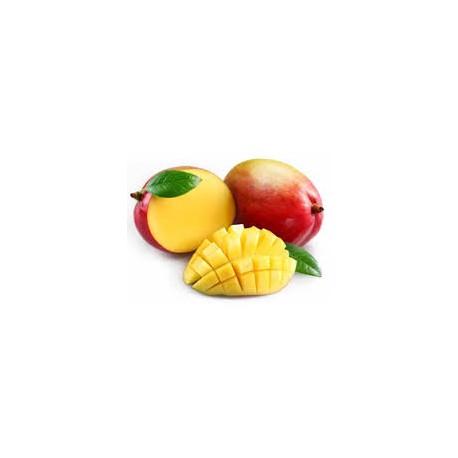 Mangue